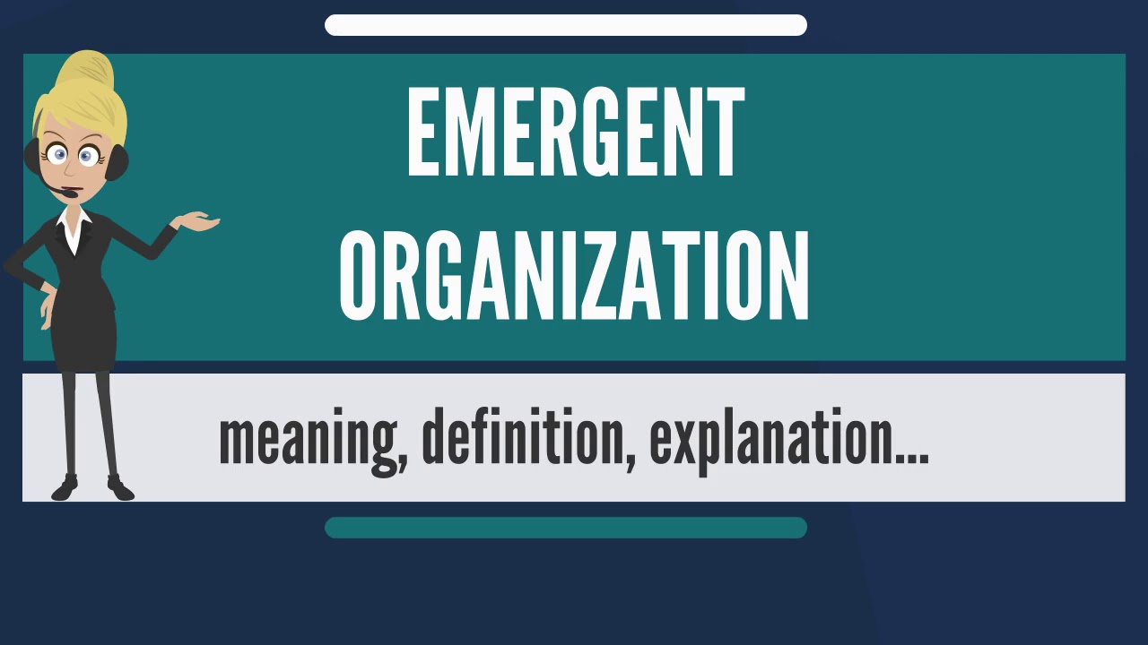 What Does EMERGENT ORGANIZATION Mean? EMERGENT ORGANIZATION Meaning