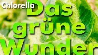 Das Grüne Wunder