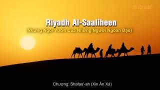 30: Chương Shafaa'-ah (Xin Ân Xá)