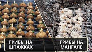 Грибы шампиньоны приготовленные на мангале и в духовке на шпажках