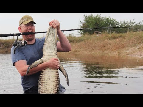 Fishing For Alligators!!! Catch Clean Cook Alligator