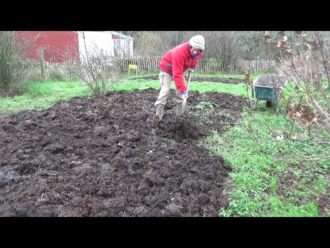 A Year In Our Vegetable Garden - January