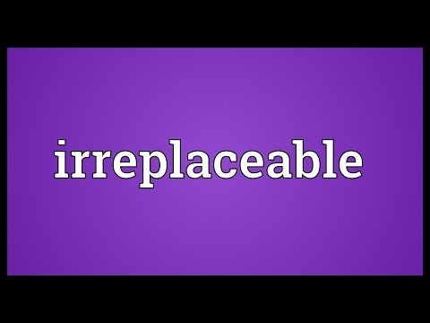 Irreplaceable Meaning