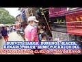 Survey Harga Burung Kacer Kenari Cak Ijo Ciblek Semi Pb Curug Tangerang  Mp3 - Mp4 Download