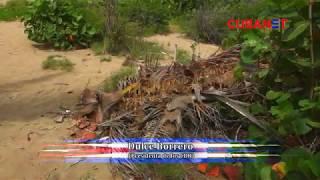 Erosión y suciedad en las playas de Guantánamo, Cuba