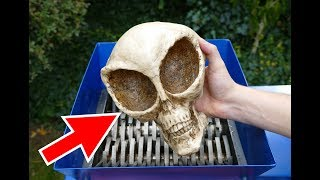 ALIEN SKULL SHREDDING! AMAZING VIDEO!