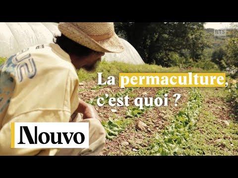 Ma t l m 39 coute doovi - La permaculture c est quoi ...