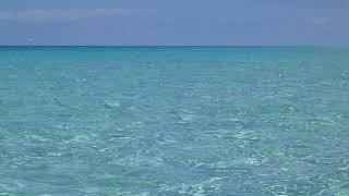 #Атлантический океан#Карибское море#