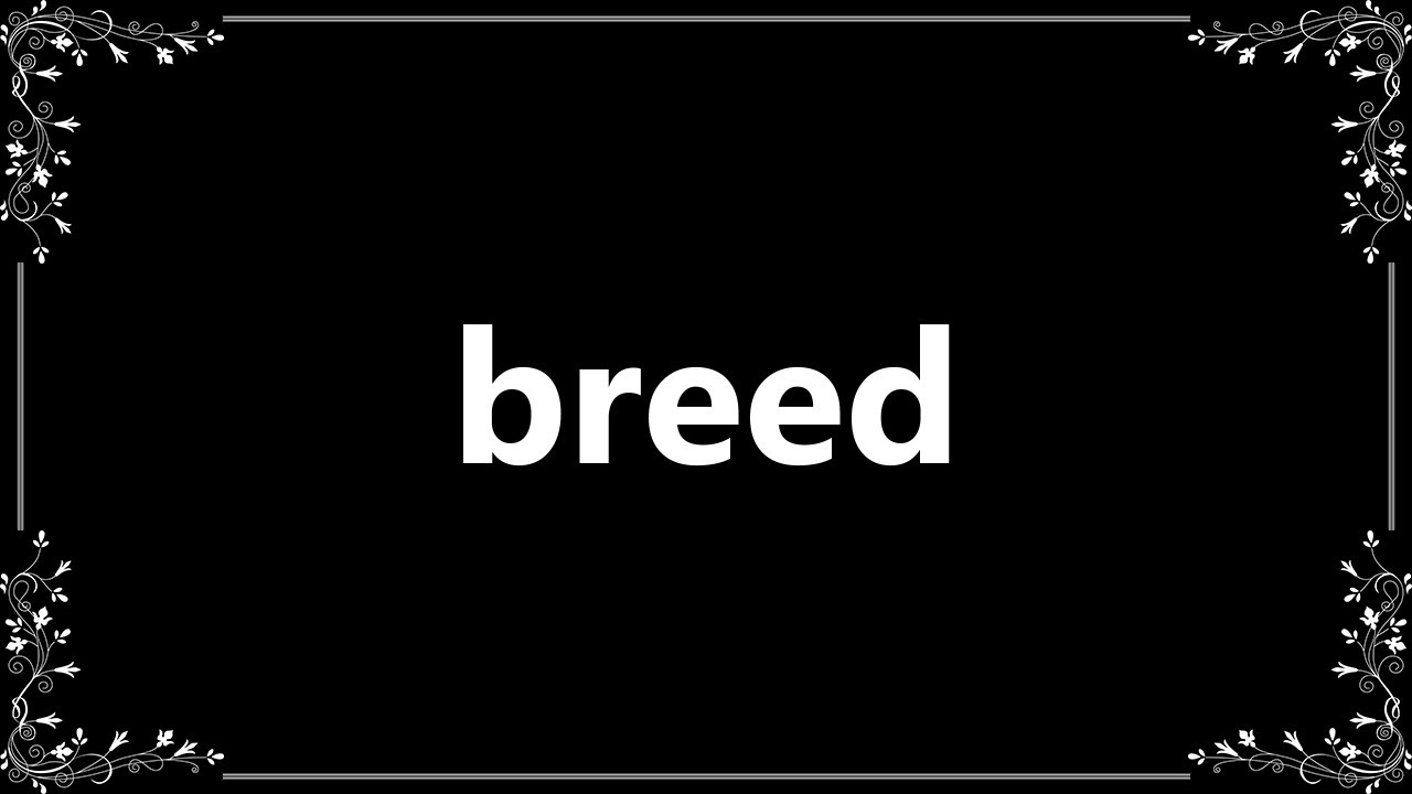Breed is ... Meaning 21