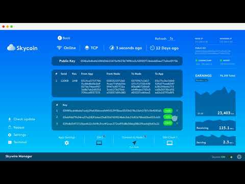 Skywire Manager User Interface Sneak Peak