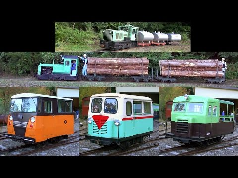 Forest Narrow Railway Festival in Japan