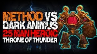 Method vs Dark Animus (25 Heroic) World First