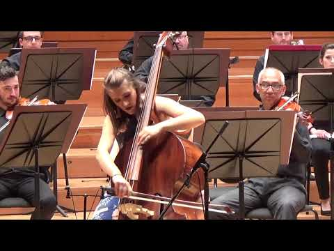 Serge Koussevitzky - Concert for double bass and orchestra op.3, I movement