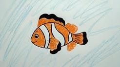 Tutorial Cara Menggambar Ikan Nemo Dan Mewarnai