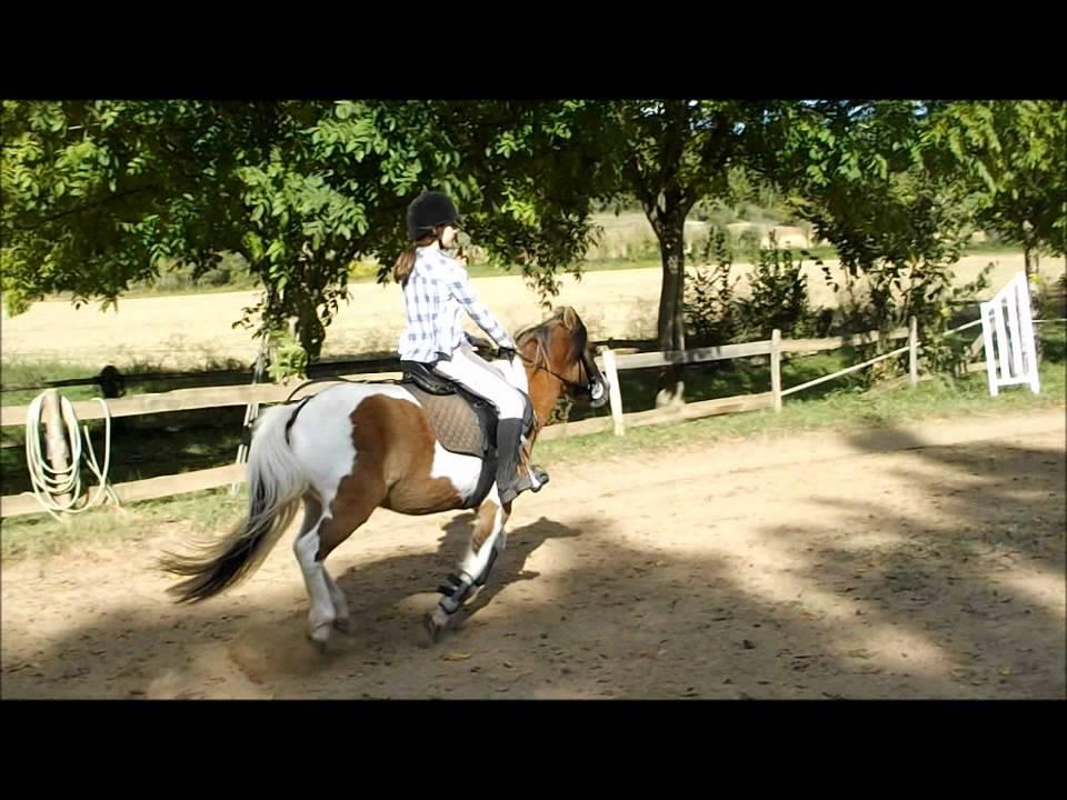 Moi qui saute a cheval et a poney youtube - Cheval rigolo ...