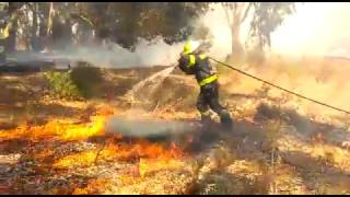 Repeat youtube video Firefighters battle gale-force winds as Western Cape fires rage on
