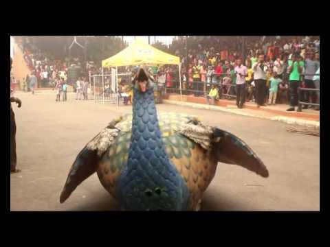 I Pia Agba Mmawnwu Festival in Enugwu Ukwu Anambra State, Nigeria from Kulturenaija TV