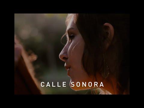 Calle Sonora   Marala Trio - Cant de faune