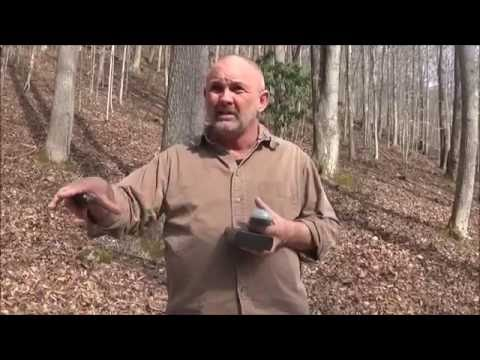 Interview with Paranormal Investigator at Haunted East Kentucky Cemetery