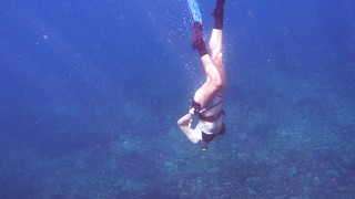 Ep 10 Come Freediving with Me (Sailing Sundowner)