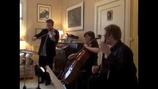 Arto Järvelä & Duo Vitare: Ei saa murhein (Jean Sibelius/unknown)