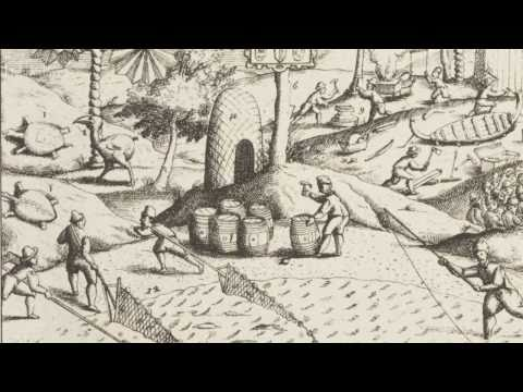 Restoring the Mauritian ecosystem | Natural History Museum