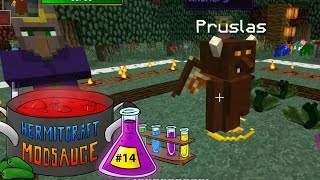 Hermitcraft Modsauce - 14 - Witchery: Summoning an imp - Modded Minecraft