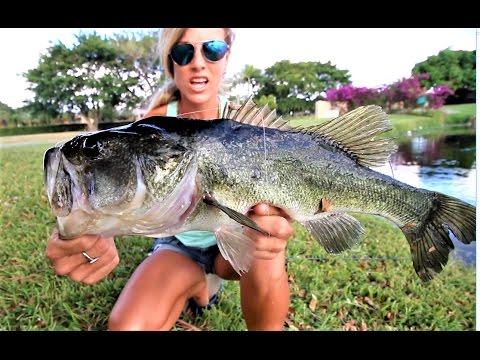 Finding Nemo Bass Fishing Challenge