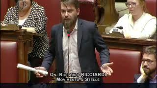 Riccardo Ricciardi - Dichiarazione di voto su #SbloccaCantieri