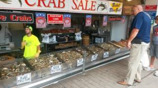 Washington DC / Best seafood on the East Coast Wharf Market 7-12-17
