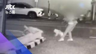 성인 4명이 막았지만…목줄 끊긴 진돗개, 소형견 습격 / JTBC 뉴스룸
