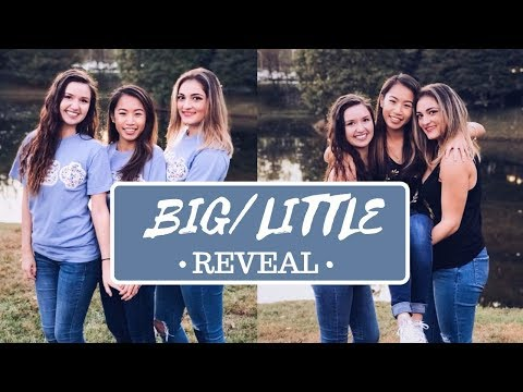 Sorority Big and Little Reveal // Getting Twins