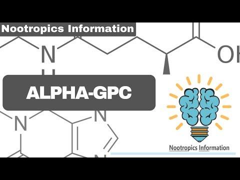 alpha-gpc---nootropics-information