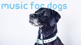 15 HOURS of Separation Anxiety Music for Your Dog! Keep Your Dog Calm!