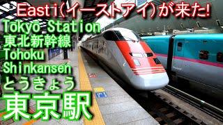 東北新幹線 東京駅に登ってみた Tōkyō Station. JR East Tohoku Shinkansen