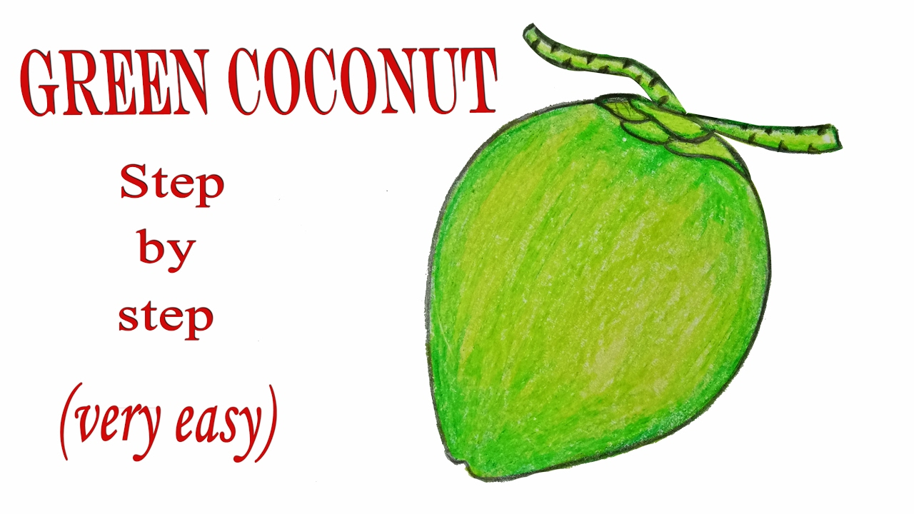 How to draw a Green coconut step by step (very easy) - YouTube