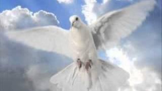 Video Beli Golub Istine- Zemlja Božura download MP3, 3GP, MP4, WEBM, AVI, FLV November 2017