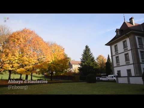 Abbaye d'Hauterive: goûter à l'expérience monastique