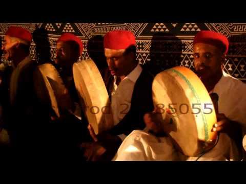 مهرجان سلطان الجريد بنفطة - Nefta