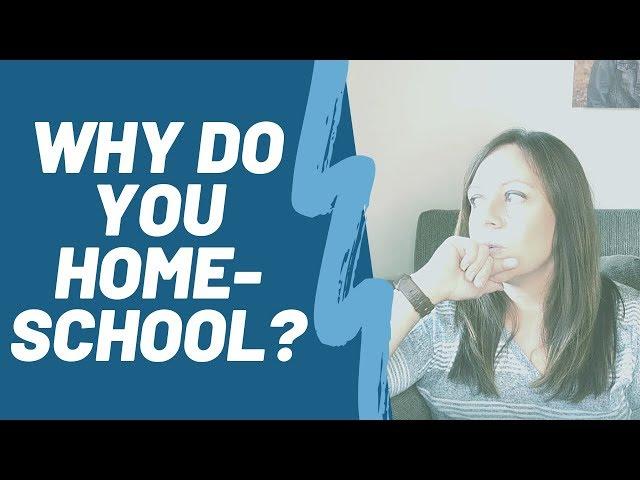 Why Do You Homeschool? A Few Reasons We Homeschooled (Initially)