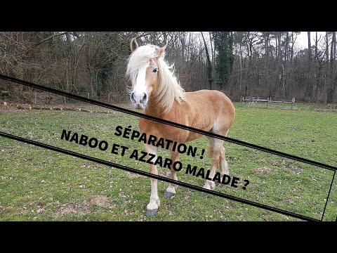 SÉPARATION ! AZZARO ET NABOO MALADES ? 😱