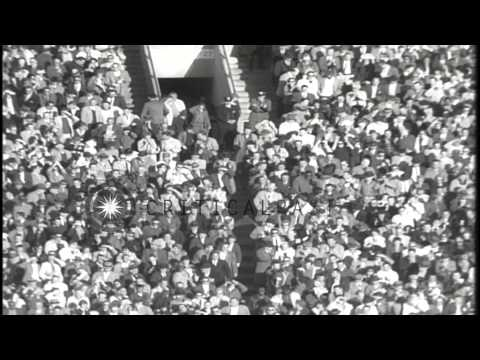 The Detroit Lions wins a football match with a score of 20-15 against the Baltimo...HD Stock Footage