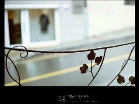 YB 윤도현 빗속에서 In the Rain
