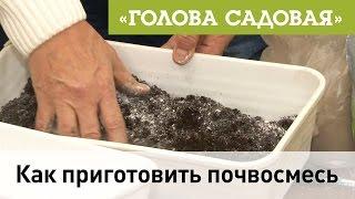 Голова садовая - Как приготовить почвосмесь