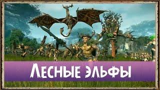 Лесные эльфы - Геймплей | Total War: Warhammer