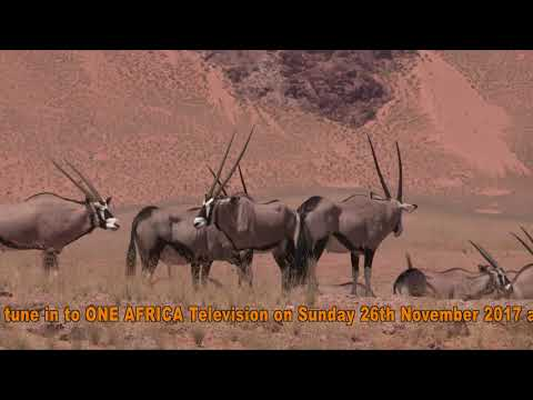 """OATV EXCLUSIVE: Wind Farm Documentary will """"Blow"""" Your Mind! By: Willem Snyman"""