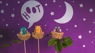 Owl Cake Pops Tutorial🦉