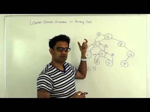Lowest Common Ancestor Binary Tree