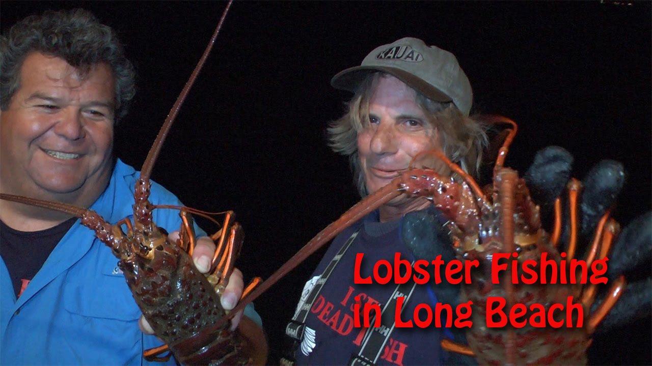 Lobster Fishing in Long Beach   SPORT FISHING - YouTube