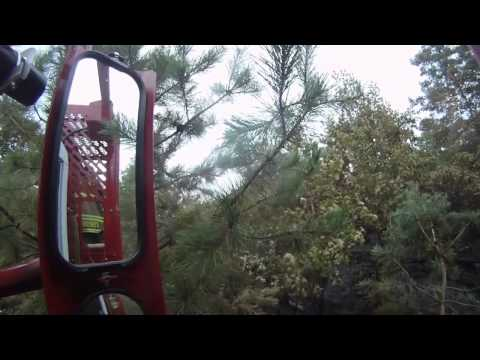 Deer Park Brush Fire